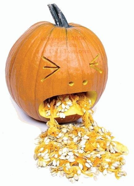 pumpkin4-707878